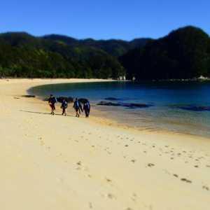 Canyoning New Zealand beach