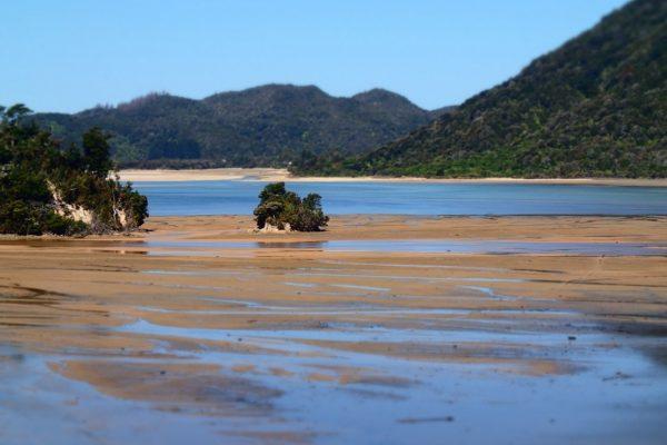 awaroa-abel-tasman-np